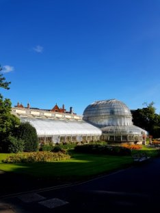 my first glimpse of The Palm House