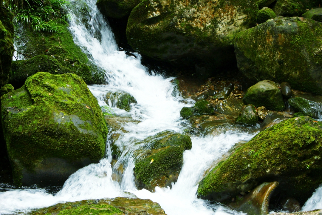 Qingchengshan stream with fast water flow and mossy rocks